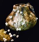 fina smycken Royaltyfri Foto