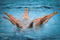 15. Fina-Weltmeisterschaft syncro, das technisches Team schwimmt Stockfotografie