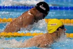 5. fina Weltmeisterschaften Barcelona 2013 Stockbilder