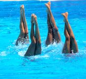 FINA world championship 2009 Stock Photo