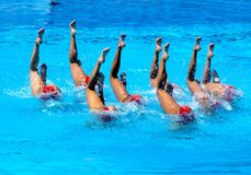 FINA world championship 2009 Stock Photos
