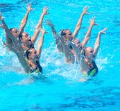 FINA world championship 2009 Royalty Free Stock Image