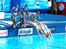 FINA world championship 2009 Royalty Free Stock Images