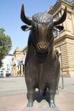 Finacial Bulls Stock Images