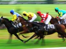 Final de la carrera de caballos Imagen de archivo