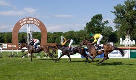 Final de la carrera de caballos Imagenes de archivo