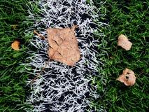 Final de la estación de fútbol Césped verde plástico del fútbol Foto de archivo libre de regalías