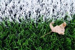 Final de la estación de fútbol Hoja seca en la tierra del césped verde plástico del fútbol con la línea blanca pintada Fotografía de archivo libre de regalías