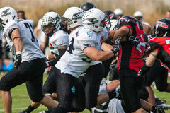 Final EFAF CUP 2013. PIONERS VS BLACK PANTHERS Royalty Free Stock Photos