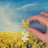 The final piece of the puzzle Royalty Free Stock Images