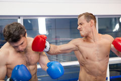 Final punch. Royalty Free Stock Images