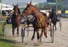 Final rush Royalty Free Stock Photo