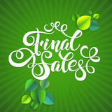 Final sales summer promotion calligraphical Stock Photo