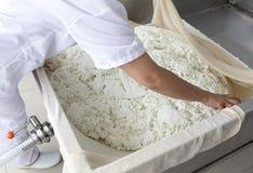 Finale de laiterie d'industrie latière de production de fromage Photos stock