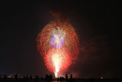 Finale Firework Royalty Free Stock Photos