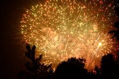 Finale grande de feux d'artifice derrière les arbres Photographie stock