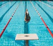 Finales de la nadada Fotografía de archivo libre de regalías