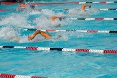 Finales de la nadada Imagen de archivo libre de regalías