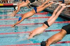 Finales de la nadada Fotos de archivo libres de regalías