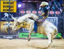 Finales del mundo del montar a caballo del toro de PBR foto de archivo libre de regalías