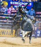 Finales du monde d'équitation de taureau de PBR Images libres de droits