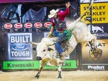 Finales du monde d'équitation de taureau de PBR Photographie stock libre de droits
