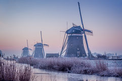 Finally Winter. Winter has finally arrived in the Netherlands. A cold frosty morning is the advent of the winter coming. The Three mills of Leidschenveen are Royalty Free Stock Image