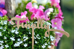 Finally word decoration, on background colored flowers. Finally word wedding decoration, on background colored flowers Royalty Free Stock Images