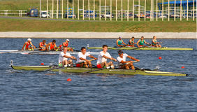 The finals in rowing Stock Images