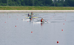 The finals in rowing Stock Photos