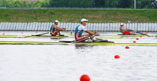 The finals in rowing Stock Image
