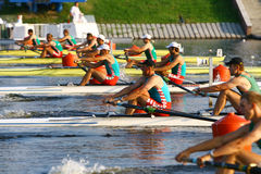 The finals in rowing Stock Photography