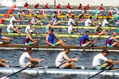 The finals in rowing. royalty free stock image