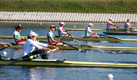 The finals in rowing Royalty Free Stock Photo