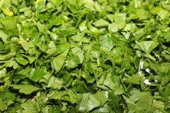 Finamente - close up verde fresco desbastado da salsa Imagens de Stock Royalty Free