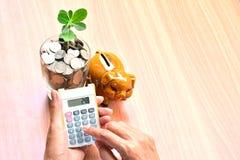 Finança, mão da pessoa que usa a calculadora com as moedas no vidro e Imagem de Stock