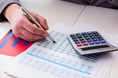 The finance analyst looking and financial reports. Finance analyst looking and financial reports royalty free stock photo