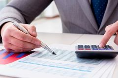 The finance analyst looking and financial reports. Finance analyst looking and financial reports stock images