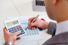 The finance analyst looking and financial reports royalty free stock photography