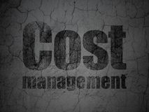 Finance concept: Cost Management on grunge wall background Royalty Free Stock Images
