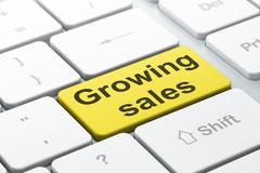 Finance concept: Growing Sales on computer keyboard background. Finance concept: computer keyboard with word Growing Sales, selected focus on enter button Stock Photo