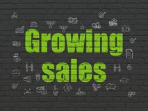 Finance concept: Growing Sales on wall background. Finance concept: Painted green text Growing Sales on Black Brick wall background with  Hand Drawn Business Royalty Free Stock Photos