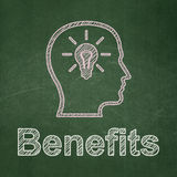 Finance concept: Head With Lightbulb and Benefits Stock Images