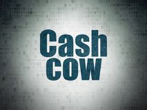 Finance concept: Cash Cow on Digital Data Paper background. Finance concept: Painted blue word Cash Cow on Digital Data Paper background Stock Image