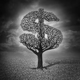 Finance Crisis. And financial drought business concept as a dying tree with no leaves in a drought landscape as a symbol of a bad economy and investment despair Royalty Free Stock Images