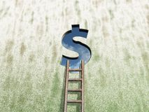 Finance hole. Dollar sign hole in wound with ladder - 3d illustration Stock Photography