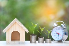Finance, Plant growing on stack of coins money and Model house on natural green background, Interest rates and Banking concept stock photo