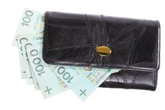 Finance. Purse with polish banknote isolated Stock Photography