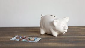 Finance saving concept. Money throwing in the piggy bank euro coins.  stock video