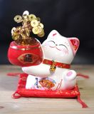 Finance savings lucky fortune cat money tree coin bank. Cute toy ceramic saving box with chinese auspicious money tree on red cushion and wooden table. Smart and royalty free stock photo